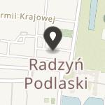 Radzyńskie Stowarzyszenie Inicjatyw Lokalnych na mapie