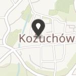 Towarzystwo Uniwersytetów Ludowych Lubuski Oddział Regionalny w Kożuchowie na mapie